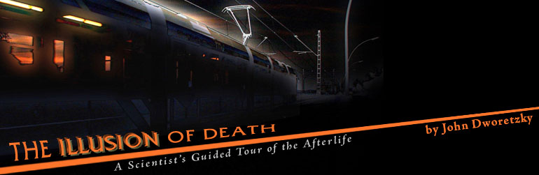 The Illusion of Death: A Scientist's Guided Tour of the Afterlife by John Dworetzky